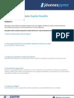 Modelo-Formulario-Categoria-1 SEPYME