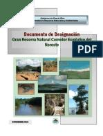 Documento de Designacion