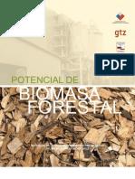 Estudio Potencial Biomasa Forestal