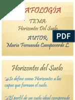 Exposición De Edafología