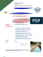 HIDRAULICA DE CANALES