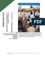 Pedestrian Audit Report
