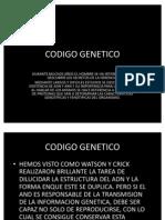 CODIGO_GENETICO[1]