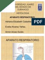 Histologia aparato Respiratorio