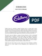 Cadbury Main Project- Final Joel 35 Pgs