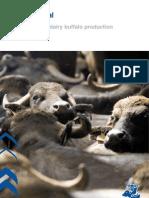Efficient Dairy Buffalo Production