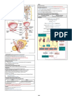 Endocrinology of Genitourinary System