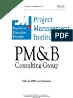 MS Project Avanzado