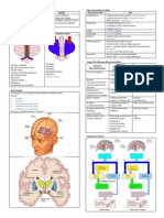 Neurochemistry of Movement Disorder