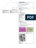 Peripheral Nerve Diseases