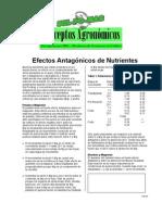 Efectos Antagónicos Nutrientes