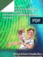 Nuevas definiciones para las orientaciones sexuales y los tránsitos identitarios