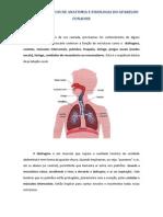 PRINCÍPIOS BÁSICOS DE ANATOMIA E FISIOLOGIA DO APARELHO FONADOR