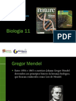 BG 4 - Como Foi Descoberto o DNA