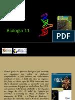 BG 9 - RNA