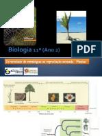 BG 18 - Diversidade de Estratégias na reprodução sexuada (Plantas)
