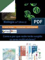 BG 21 - Evolução Biológica (unicelularide e multicelularidade)
