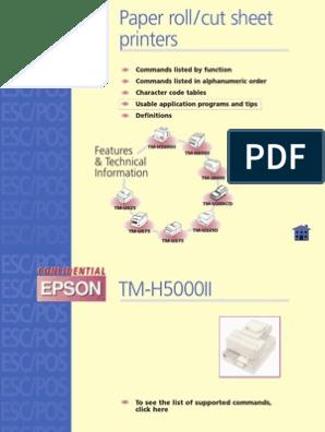 Epson Programming Guide | Printer (Computing) | Printing