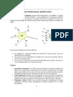 Redes Neuron Ales Artificiales Actualizado 2011