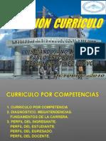 CURRICULO2010PLF[1]