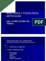 anatomiayfisiologiaarticular-gralidadesinflamacion-100816210342-phpapp02