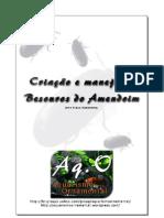 Criação e manejo de Besouro do Amendoim