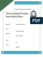 Proyecto Resumen - LEON BARSALLO