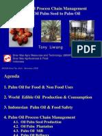 Palmoelproduktion Indonesien-pt Smart