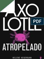 1º Cap Axolotle Atropelado