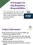 GCP Presentation 6-1-10