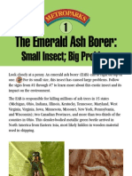 Emerald Ash Borer Domonstration Trail