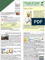 Publicação Diocesana - VINDE E VEDE n.º 4
