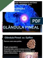 GLÂNDULA PINEAL