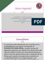 Conducto Inguinal