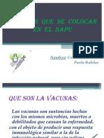 Vacunas Que Se Colocan en El Sapu