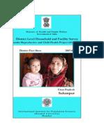 49 Revised Factsheet Sultanpur UP