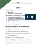 Cultura Organizacional - 2010