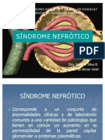 sindrome-nefrotico-1220730502816091-9