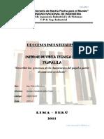 Informe Visita Tecnica N°3 TRUPAL
