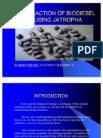 Extraction of Biodiesel Using Jatropha