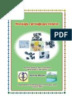 Mineralogia e petrologia