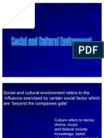 Social and Cultural Environment Ppt