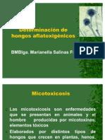 Determinación de Aflatoxinas