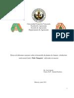 Tesis Efecto de Diferentes Sustratos Sobre Desarrollo de Plantas de Anturio Cultivadas en Maceta