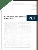Patologia Cordon Umbili
