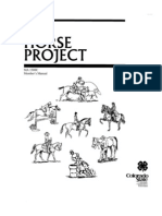 4H Horse Project