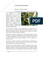 Fijacion Biologica Del Nitrogeno