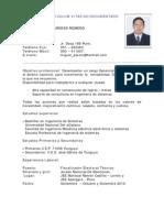 Curriculum Vitae Miguel 2011