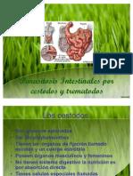 Parasitosis ales Por Cestodos y Trematodos