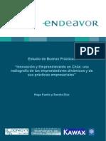 Emprendimiento-En Chile 2008